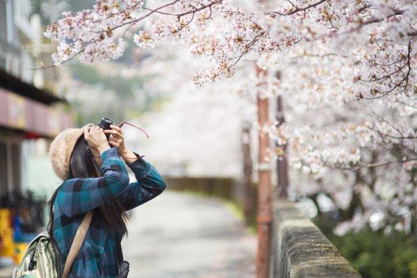 Sudah Siap Traveling? Inilah 10 Rekomendasi Pakaian yang Cocok Kamu Kenakan Saat Musim Semi di Jepang