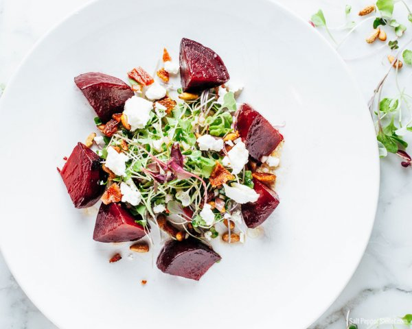 How to Make a Microgreen Salad- 8 Microgreen Salad to Add a Pop of Freshness to Your Everyday Salads