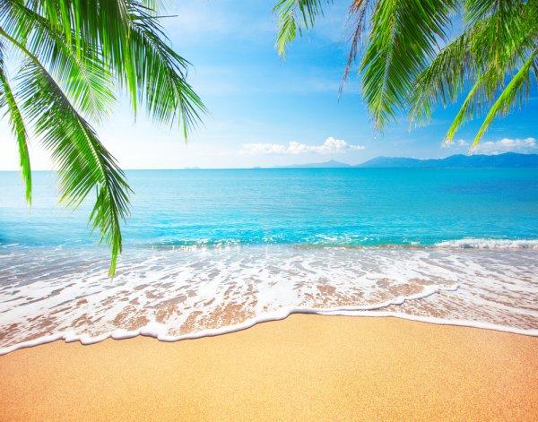 Jalan-Jalan ke 11 Pantai di Sekitar Jawa Tengah yang Indah Ini, Yuk!
