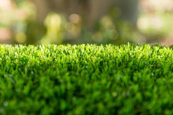 Yuk Hias Rumah dengan Rumput Sintetis Terbaik Rekomendasi BP-Guide! (2020)