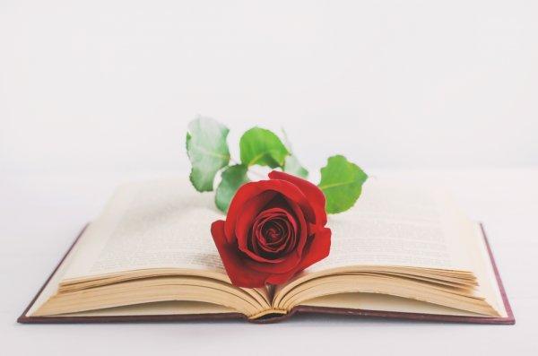 9 Rekomendasi Buku ini Cocok untuk Kamu yang Menyukai Novel Islami Romantis