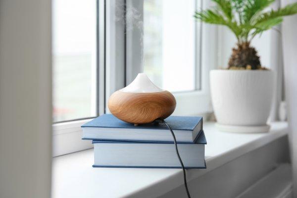 11 Rekomendasi Aromaterapi Ruangan yang Punya Beragam Manfaat dan Kegunaan