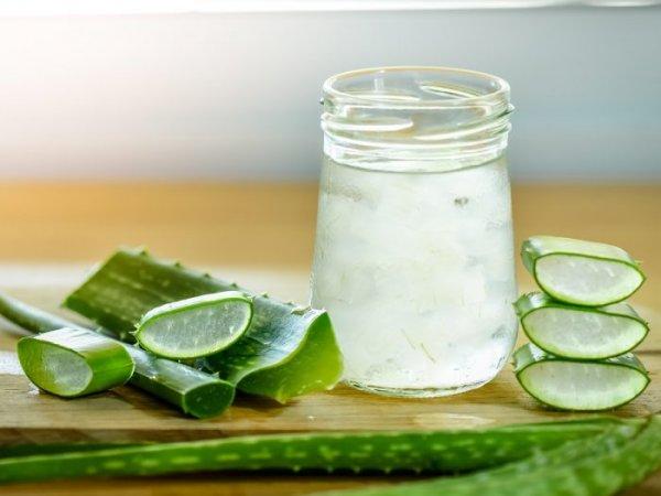 Kulit Segar dan Lembap Terawat dengan 10+ Produk Aloe Vera Kaya Manfaat Berikut Ini