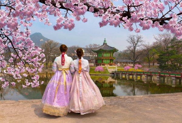 11 Tempat Menarik di Korea Selatan dan 5 Tips Jalan-jalan Asyik ke Sana