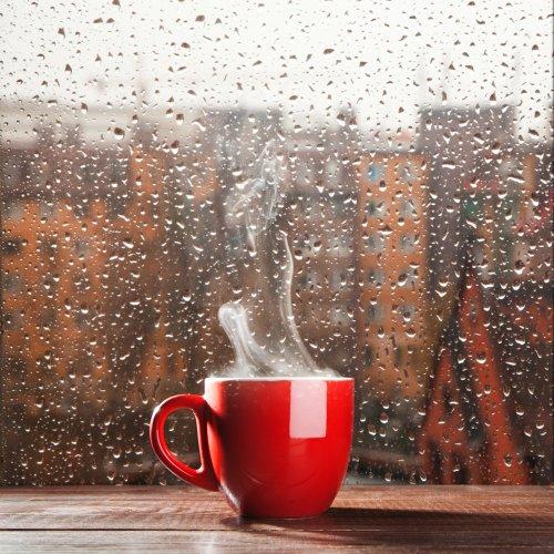 Menggigil Kedinginan di Musim Hujan? Coba Saja Nikmati 10 Minuman Hangat Ini