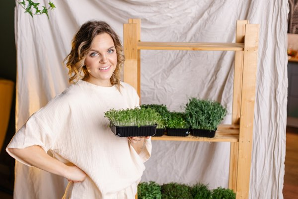 Wondering How to Grow Microgreens at Home? Check out the Step-by-Step Guide on How to Grow Microgreens from Seed and Introduce Your Family to a Super-Healthy and Delicious Diet (2021)