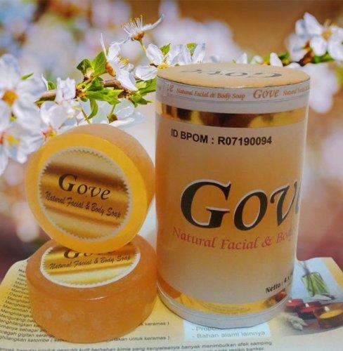 Sabun Gove, Satu Sabun dengan 4 Manfaat Berkhasiat untuk Tubuh