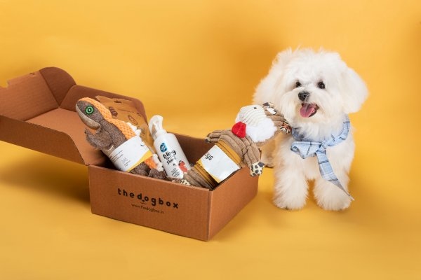 Buy an Exclusive Dog Subscription Box and Pamper Your Fur Baby with Specially Curated Pet Care Goodies (2021)