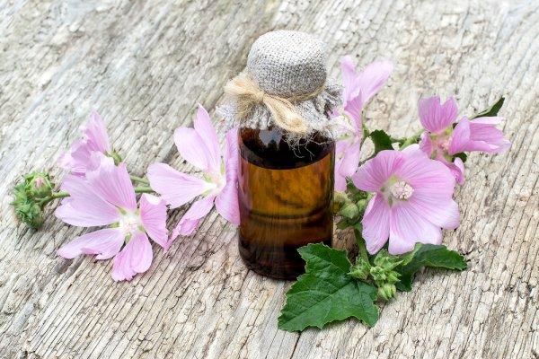 Relaksasi Tubuhmu dengan 10 Rekomendasi Aromaterapi Elektrik yang Praktis dan Mudah Digunakan