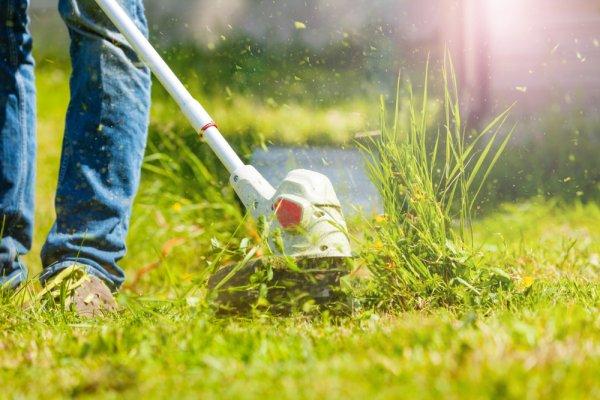 Yuk, Kenali 10 Rekomendasi Mesin Potong Rumput Kecil dan Tips Perawatannya!