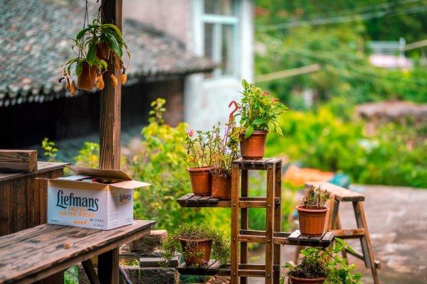 10 Rekomendasi Rak Bunga Kayu Untuk Memperindah Rumah 2020