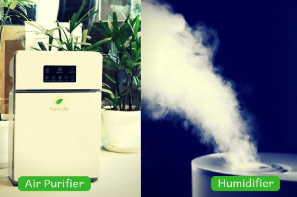 Humidifiers vs Air Purifiers: Everything You Need to Know about Humidifiers and Air Purifiers and Which One Will Be Perfect for Your Home (2020)