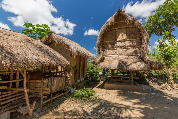 Deretan Pariwisata Lombok yang Memikat Hati Wisatawan Lokal dan Mancanegara