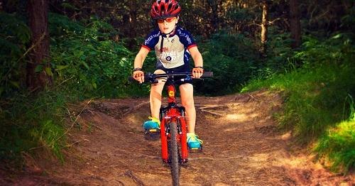 9+ Tips Memilih Sepeda Gunung Berkualitas Baik untuk Anak Anda