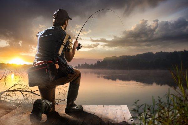 Punya Hobi Memancing? Inilah 10 Rekomendasi Alat Pancing Pioneer yang Wajib Kamu Miliki