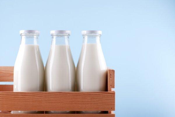 Sehat dan selalu Segar dengan Susu, Yuk, Buat Minuman Super Mantap dari Susu!