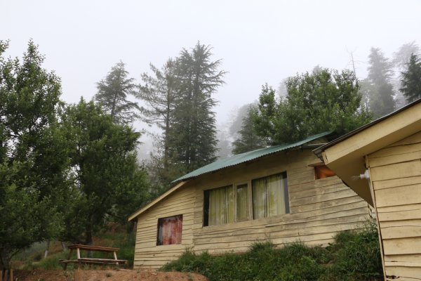 Take a Break, Go Camping and Rejuvenate Your Mind, Body and Soul! Beautiful Camping Sites in Shimla for a Memorable Camping Experience (2020)