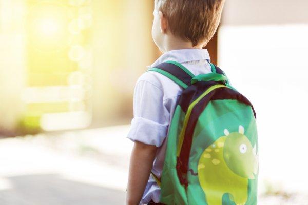 8+ Pilihan Tas Anak Karakter Yang Oke Untuk Anak Usia Sekolah