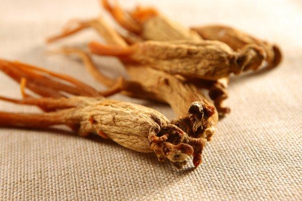 Rekomendasi 10+ Produk Berbahan Ginseng Korea untuk Membantu Menjaga Kesehatan Anda dan Keluarga