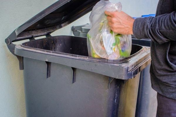 Tempat Sampah Besar Ini Cocok untuk Di Depan Rumah