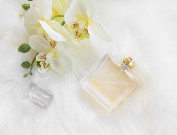 Daftar 9 Parfum Wanita Terbaik di Dunia yang Siap Memikat Anda