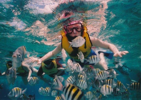 Liburan ini Kamu Bisa Snorkeling di 8 Spot Snorkeling Bali, Cek juga 5 Peralatan Snorkelingnya untuk Kamu (2020)