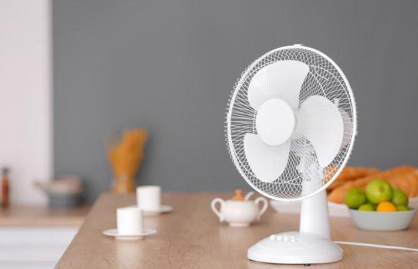おすすめ 小型 扇風機