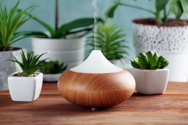 Kenali 4 Jenis Diffuser dan Coba 10 Rekomendasi Aromaterapi Diffuser yang Efektif Membersihkan Udara