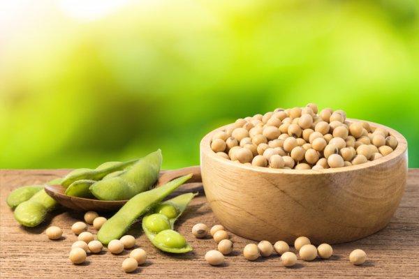 10 Rekomendasi Makanan Enak dan Sehat yang Terbuat dari Kacang Kedelai