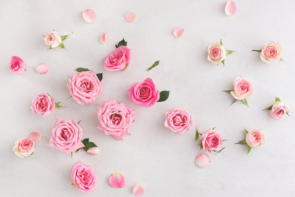 Looking for a Gift for Rose Day to Kickstart Valentine's Week? 10 Beautiful Flower Arrangements and 5 Ways to Make it Special