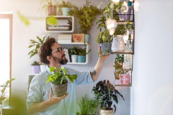 Percantik Rumah Dengan 9 Rekomendasi Rak Bunga Besi Minimalis Yang Cocok Untuk Pot Tanaman Favorit Anda