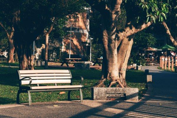 40+ Gambar Bangku Taman Unik HD Terbaik