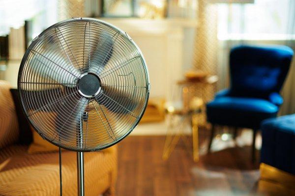 चिलचिलाती गर्मी से परेशान है तो आज ही खरीदें इन 10 सबसे अच्छे कहीं भी ले जा सकने वाले पंखों को और पाएं गर्मी से राहत। कुछ सुझाव और अन्य जानकारी के साथ (2020)