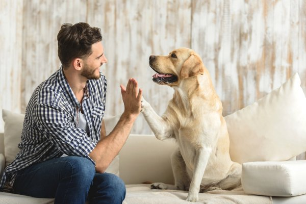 10 Thoughtful Gifts for Your Friend Who is a Dog Lover (2019)!