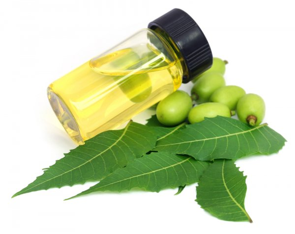 Make the Miraculous Neem Oil a Part of Your Daily Life: Discover the Numerous Uses of Neem Oil and How It Can Give You a Radiant Skin, Lustrous Hair and Overall Health and Wellbeing! (2020)