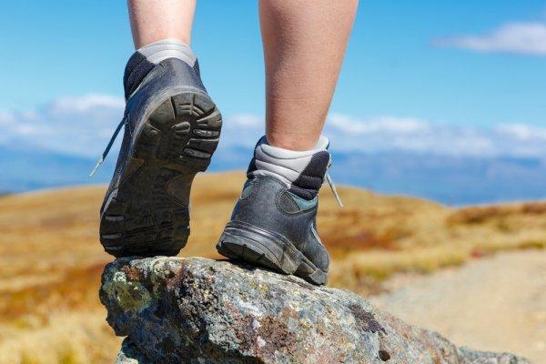 Tips Memilih Sepatu Gunung Eiger Dan 8 Pilihan Sepatu Eiger Terbaik Untuk  Petualanganmu bc4ad39144