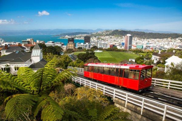 Menikmati Keindahan New Zealand, Jangan Lupa Pulang Membawa 10 Rekomendasi Oleh-oleh ini, Ya!