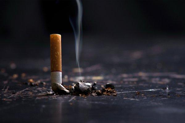 Yuk, Cek Fakta Seputar Rokok dan Intip 10 Rokok Mahal yang Wajib Kamu Tahu!
