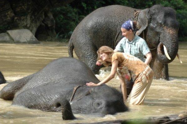 Wah, Ini Lho Beberapa Ekowisata di Indonesia yang Patut Menjadi Contoh!