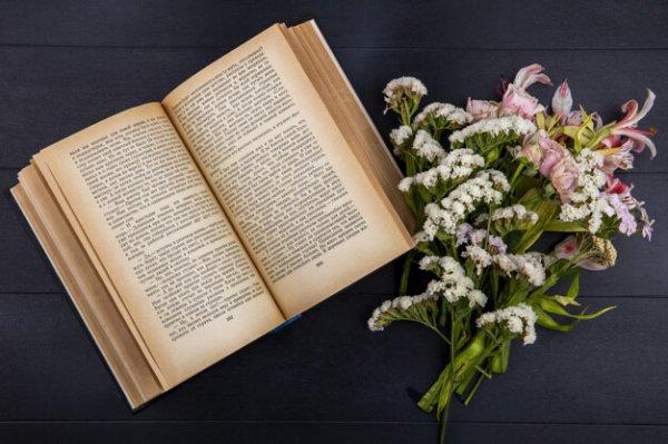 Ingin Memberi Kado Bermanfaat?Ini 10 Rekomendasi Buku tentang Pernikahan yang Tepat Jadi Kado Pernikahan (2020)