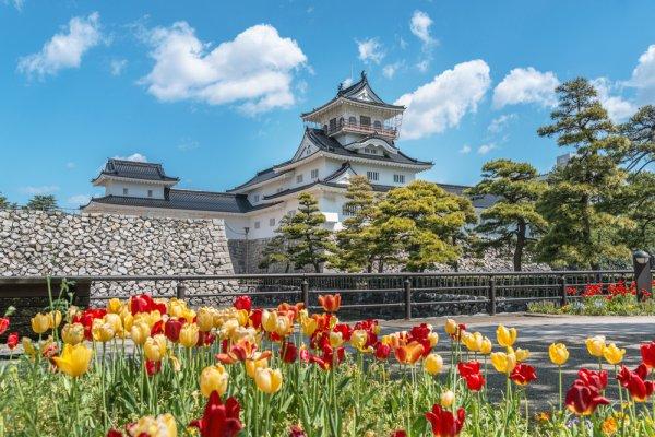 富山 旅館 ランキング