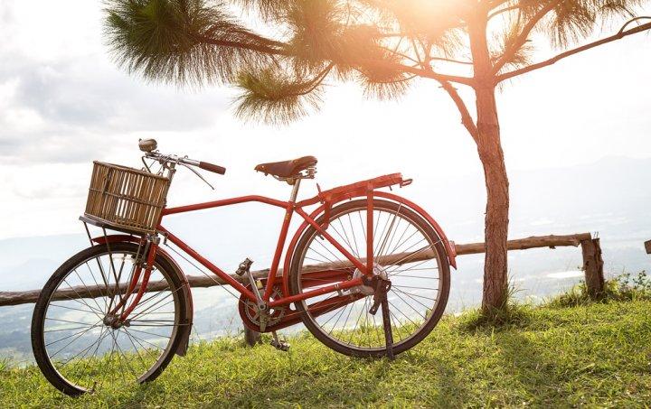 6 Sepeda Jepang Populer yang Berkualitas dan Tak