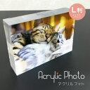 名入れフォトフレーム 猫 写真入り アクリル フォト L伴サイズ フォトフレーム キューブ パネル写真プリント 誕生日 インテリア おしゃれ オリジナル 名前入り acrylic-photo-cat ギフト プレゼント ペット