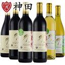 ワイン飲み比べセット 酸化防止剤無添加ワイン 6本 セット カルフォルニア 産 品種別 飲み比べ フレイヴィンヤード オーガニックワイン ヴィーガン 送料無料