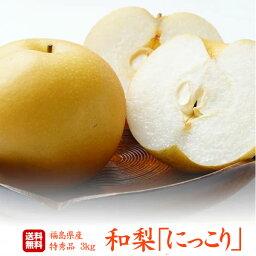 梨 梨の匠 贈答用/最上等級/特秀 福島県産 梨「にっこり」3キロ(5〜7玉)5Lサイズ以上の大玉品種!超新鮮朝摘みでお届けいたします!抜群の甘さ、みずみずしさ!甘さ溢れる果汁!