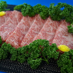 但馬牛 【送料無料】|但馬牛 ロースすきやき・しゃぶしゃぶ肉 約1,200g(約600g×2)