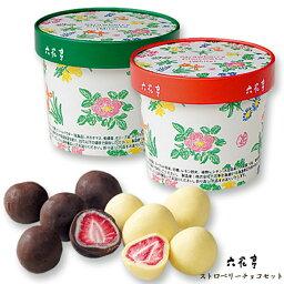 六花亭 チョコレート 六花亭 ストロベリーチョコセット(ミルク・ホワイト) / 北海道お土産 お返し お取り寄せ 贈り物 花柄 かわいい いちご ドライフルーツ チョコレート ろっかてい【冷】