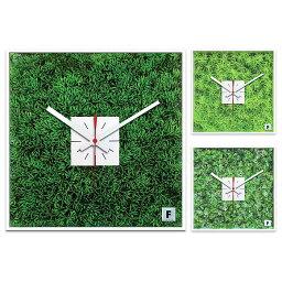 芝生 時計 【エントリーで★最大ポイント10倍!】 【 送料無料 】 芝生の掛け時計 CSB5007(SW-CSB5007) (検)|時計|掛け時計|掛時計|かけ時計|木製【10P05Nov16】