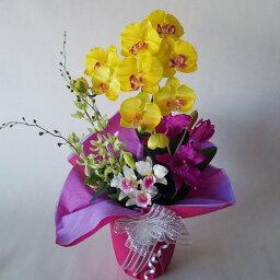 カトレア 造花アーティフィシャル胡蝶蘭黄M&カトレアアレンジb-12高さ40cm×巾25cm造花・光触媒