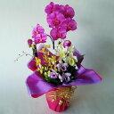 カトレア 造花アーティフィシャル胡蝶蘭白赤M&カトレアアレンジb-14高さ40cm×巾25cm造花・光触媒